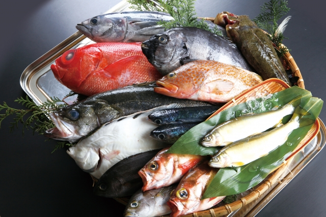 たくさんの魚